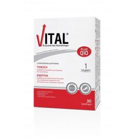 VITAL PLUS Q10 Πολυβιταμινούχο Συμπλήρωμα Διατροφής 30 Δισκία