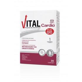 VITAL PLUS Q10 Cardio 30 LipidCaps